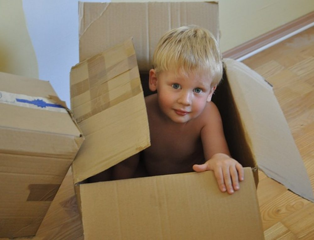 Family Law Relocation Cases